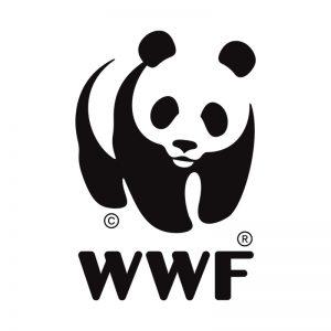Cliquez sur la panda pour accéder au site de Radio des Bois
